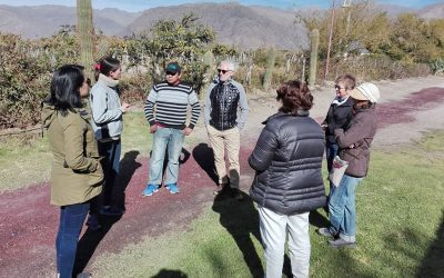 Burbujas de Altura • Get to know the Calchaquí Valley, discover Cafayate.