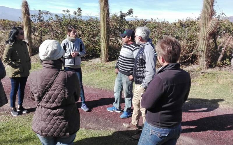 Burbujas de Altura • Conozca el Valle Calchaquí, descubra Cafayate.